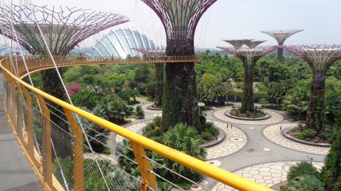 Garden By The Bay Singapura, Tempat Wisata Yang Harus Dikunjungi Ketika Berada di Singapura