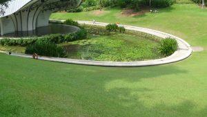 Symphony Lake Singapore Botanic Gardens