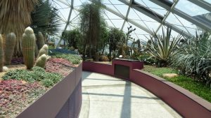 Flower Dome - Garden By the Bay