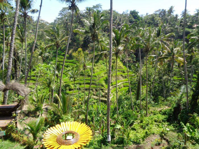 Tempat Wisata Kekinian Di Bali Indonesia